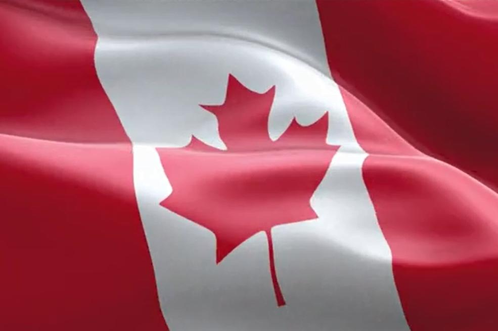 侨外加拿大