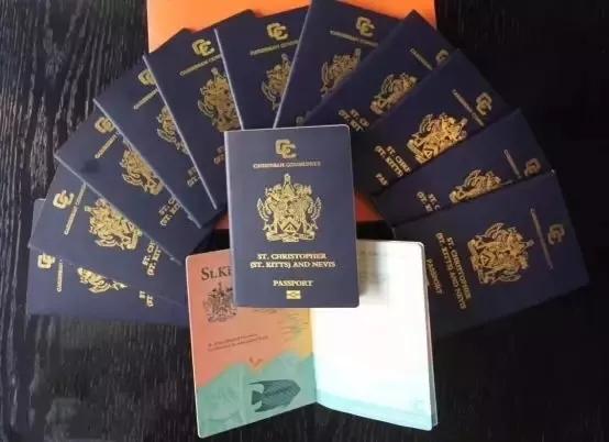 僑外護照移民: